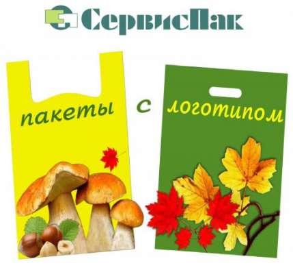 Напечатать логотип на пакетах в Туле
