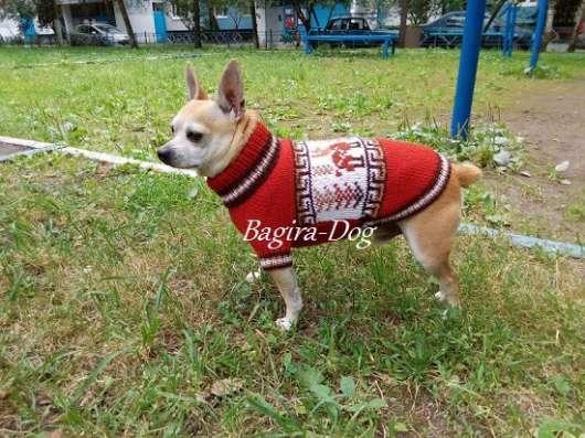 Вязаная одежда для собак в Москве Фото 5