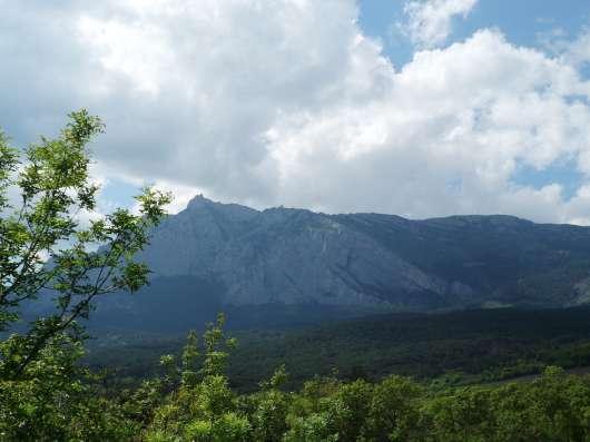 Земельный участок с видом на море и горы в Гаспре