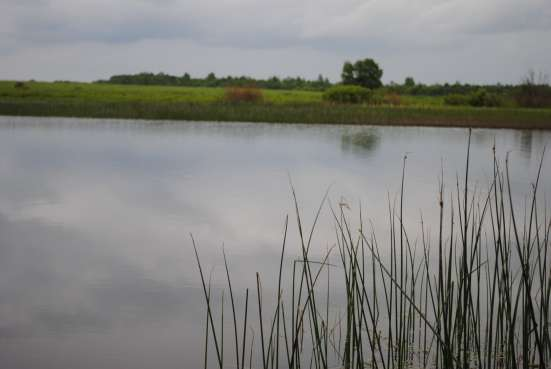 Продаю земельный участок в г. Калязин Фото 3