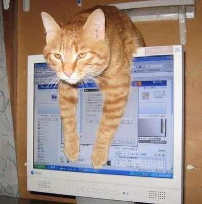 Тихий домашний компьютер
