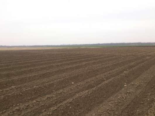 Продажа теплично-фермерского хозяйства