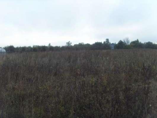 Продается земельный участок 17,5 соток в дер. Гавшино (ЛПХ) Можайский район, 100 км от МКАД по Минскому шоссе. Фото 2