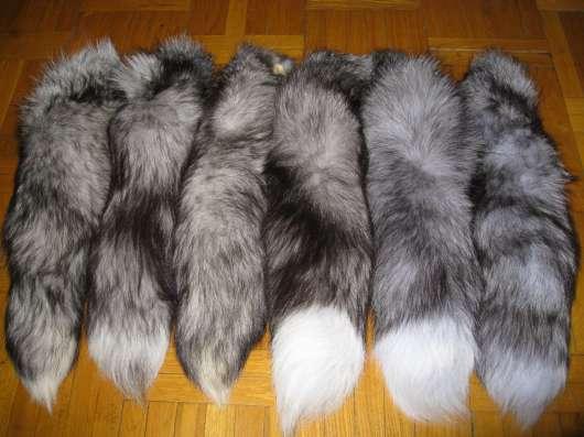 Натуральные меховые хвосты в Москве Фото 1