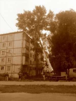 Спилить дерево, деревья в г. Самара Фото 1