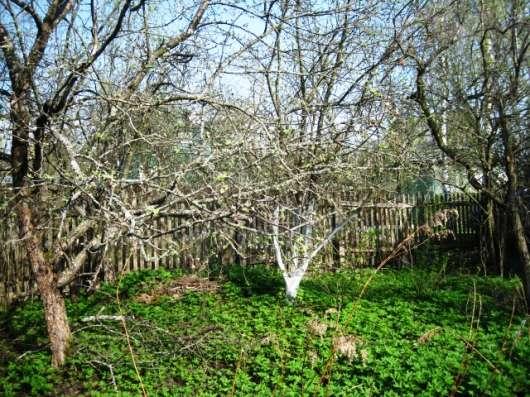 Летняя дача в Алешинских садах на 6 сотках, 30км. от МКАД в Москве Фото 2