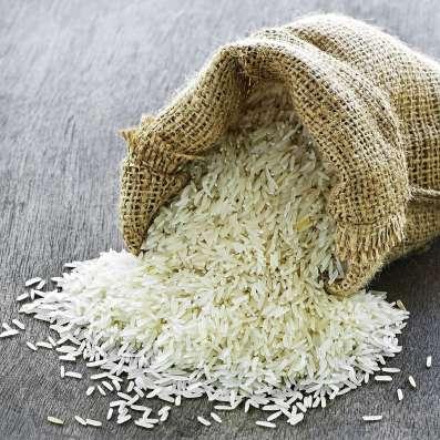 Поставка риса из Вьетнама и Таиланда, более 10 видов в Москве Фото 1