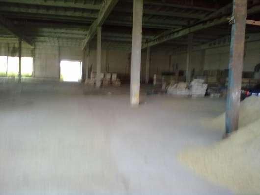 Рисовая лузга дроблённая. Зола рисовой лузги в г. Славянск-на-Кубани Фото 2
