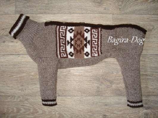Комбинезоны для Ксоло, Перуанских голых собак