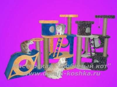 Домики для кошек в Новосибирске Фото 1
